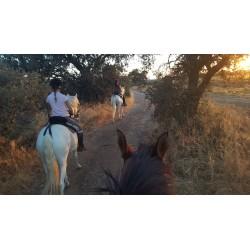 Ruta a Caballo por la Via Verde de la Campiña Córdoba - La Carlota