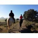 Fin de semana Ecuestre en el Parque Natural de la Sierra de Hornachuelos