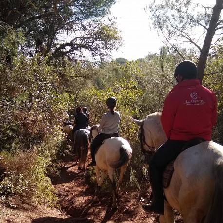 Ruta a Caballo por la Sierra de Córdoba 1/2 jornada + almuerzo