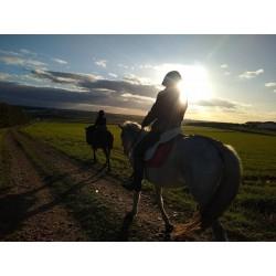 Ruta a caballo por la campiña + almuerzo Paco Maestre